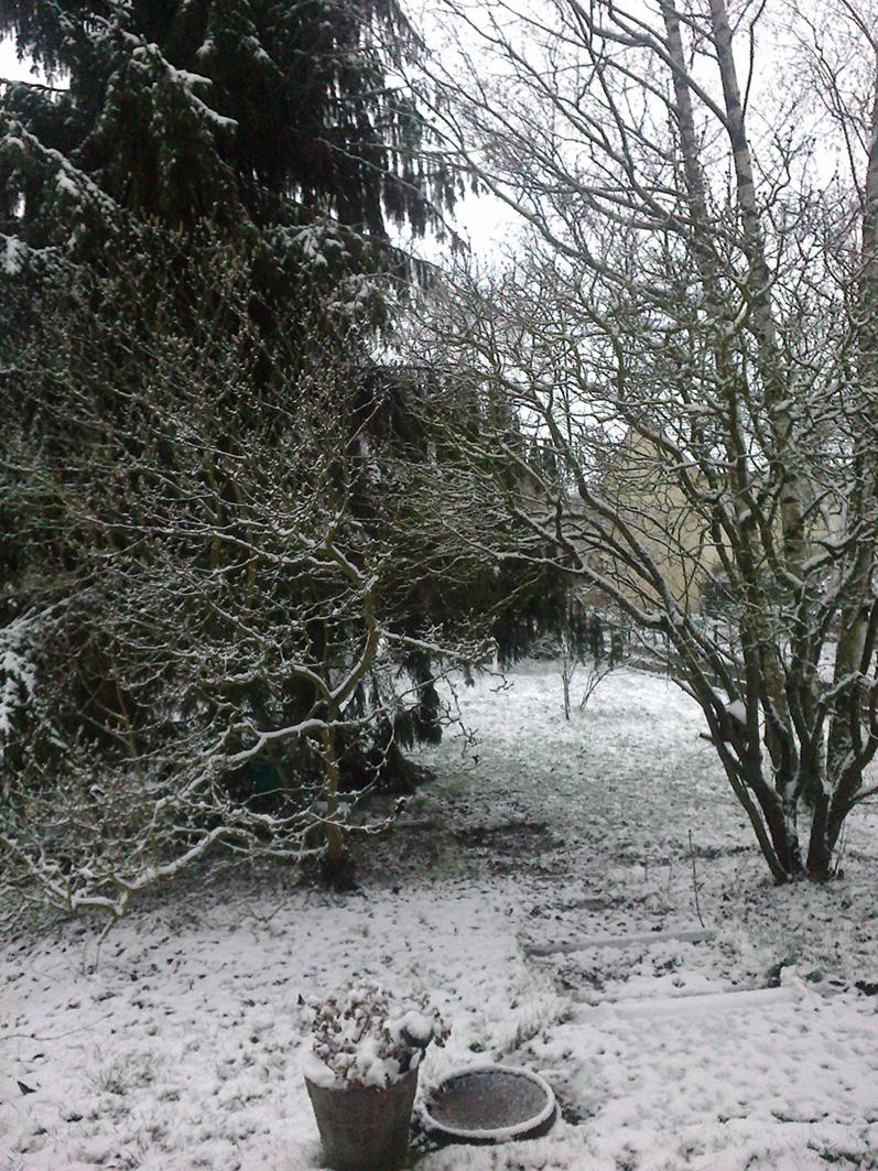Première neige à Nancy dans Photos 31012012247-petit