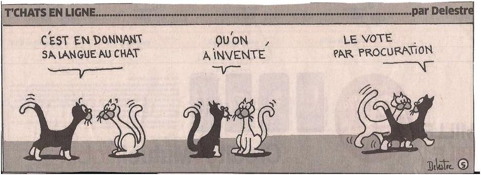 La langue au chat dans Coupures de presse ER001