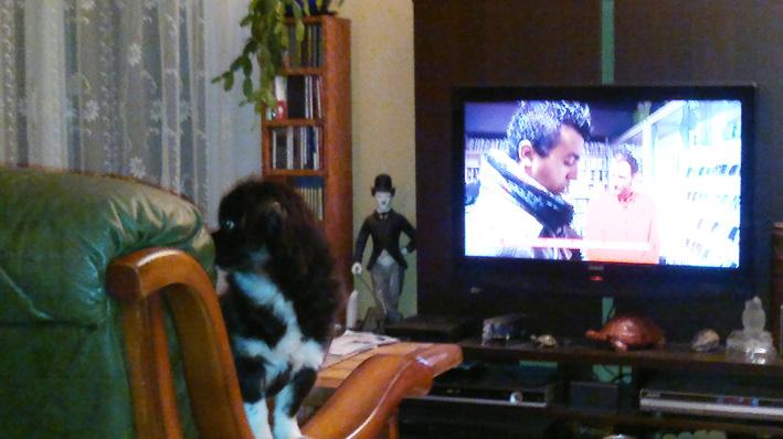 Hella devant la TV dans Hella 08102012287-petit