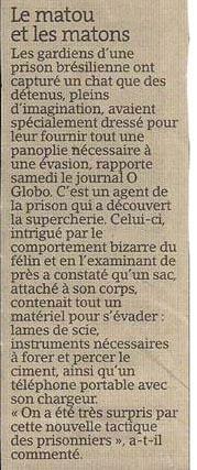 Matou vs matons dans Coupures de presse er02