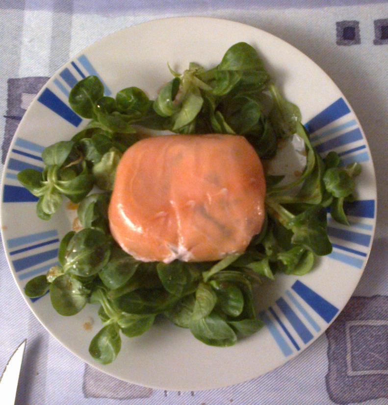 fondant-de-saumon-1-petit-bis