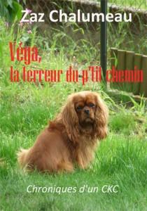 La guêpe dans Véga chalumeau-vega-la-terreur-du-ptit-chemin-1ere-de-couverture-210x300