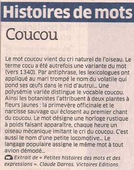 L'origine du mot coucou dans Coupures de presse er52