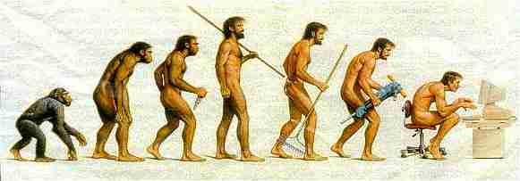 evolution_darwinhomo21
