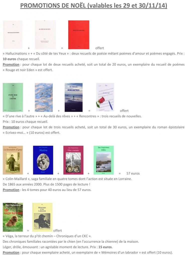 PROMOTIONS DE NOËL 2014