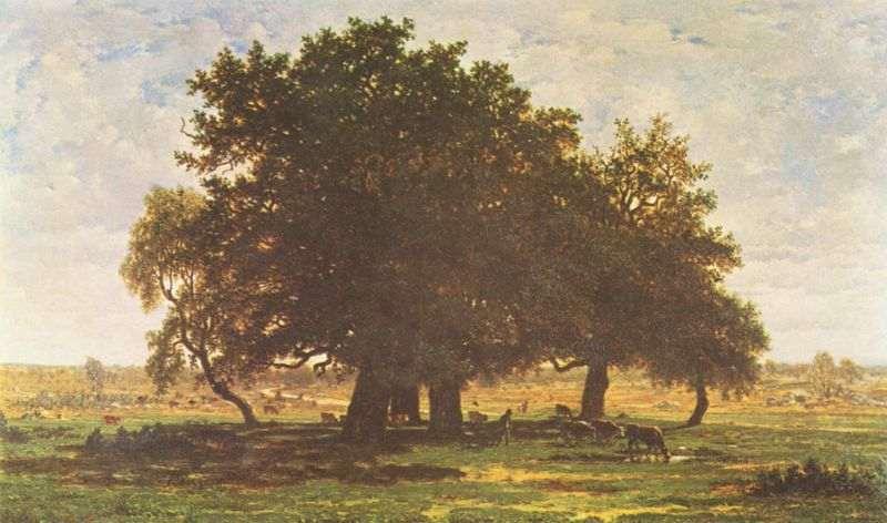 Rousseau toile