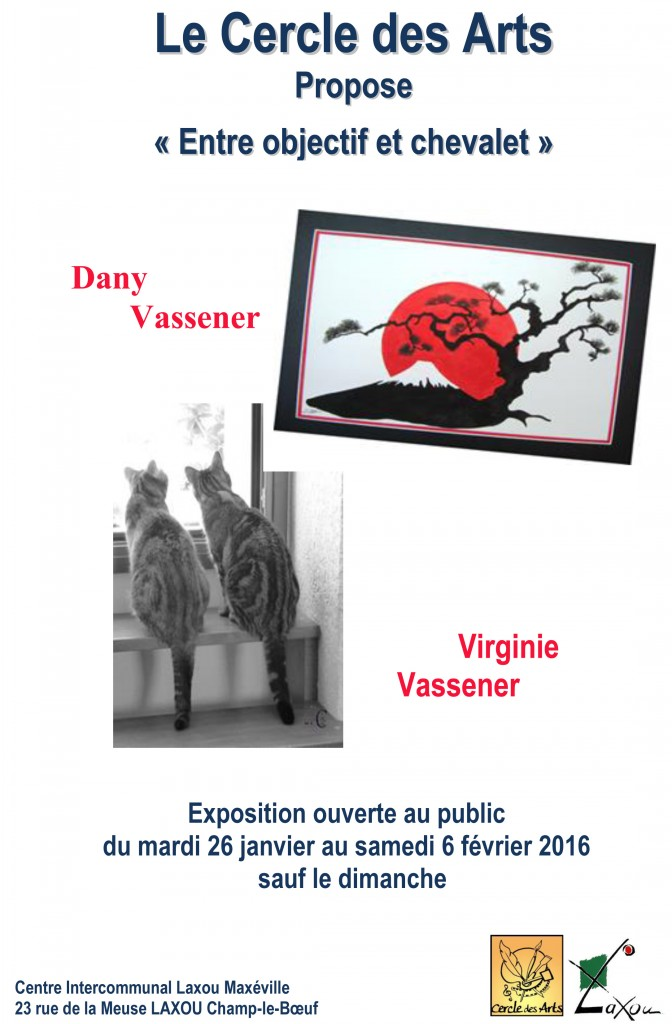 Affiche Dany et Virginie