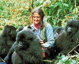 Diane_Fossey28